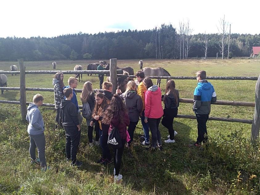 """""""Aktywnie w lesie i o lesie"""" – czyli innowacyjny sposób na edukację społeczną na rzecz zrównoważonego rozwoju ze Stowarzyszeniem """"Leśnicy dla Polski"""""""