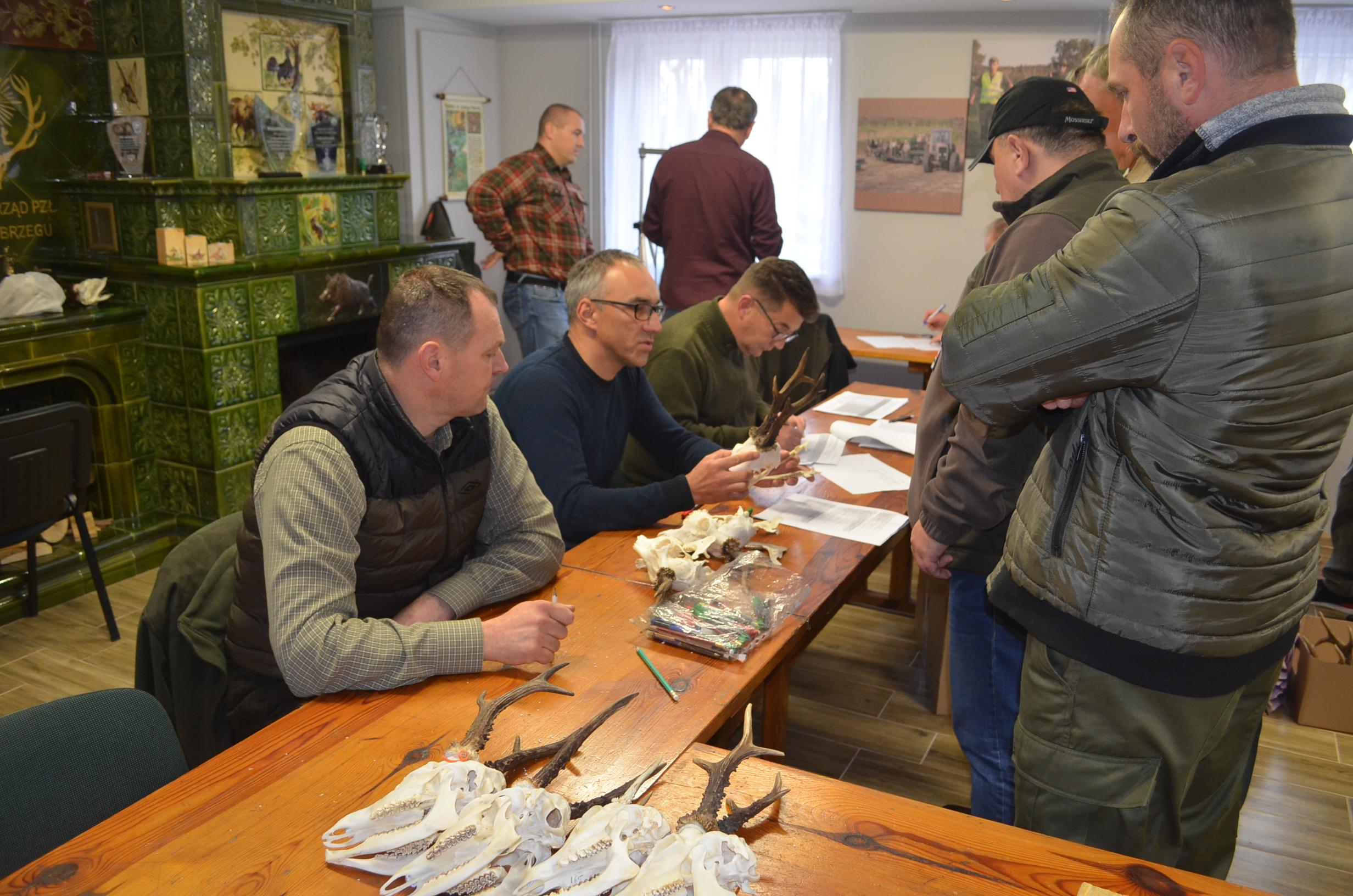 Ocena i wycena prawidłowości odstrzału sarny-kozłów, sezon 2019/2020.