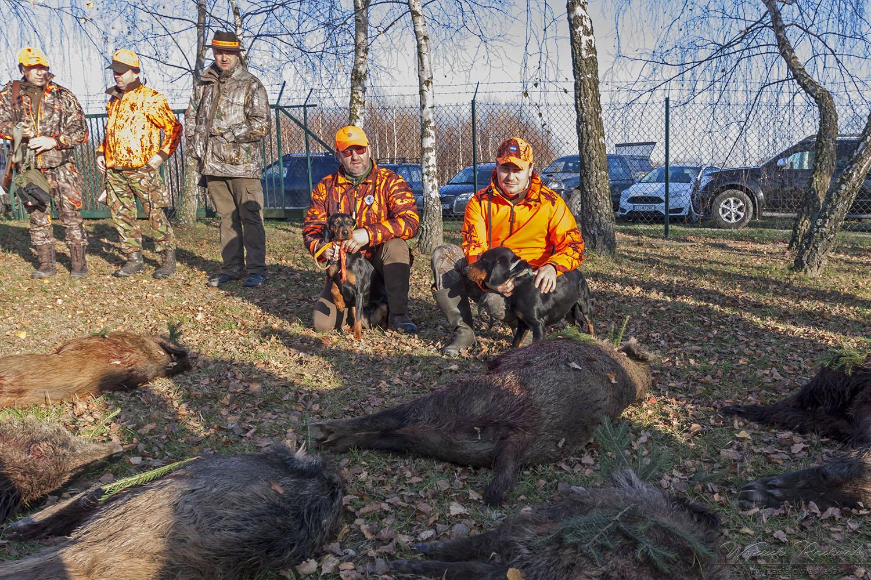 Ocena pracy dzikarzy w naturalnych warunkach, 23,24 listopad 2019 r.